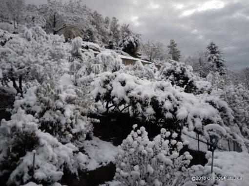 Inverno, le prime nevi